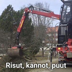 koura-autot-risut-kannot-puut